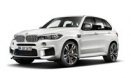 X5M F85 Sports Activity Vehicle